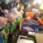 魚比自己高「感覺很新奇」 學童在魚市培養在地認同