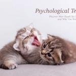 超準貓咪心理測驗!選喜歡的貓咪花色,測你在別人眼中的樣貌,選橘貓靦腆又呆萌
